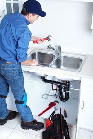 plumbing services california